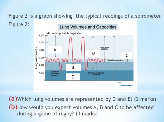 essays on emphysema